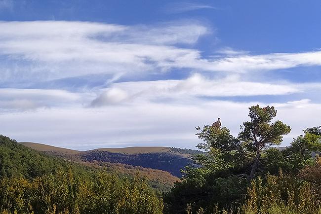 photo montagne alpes randonnée rando drome buis les baronnies