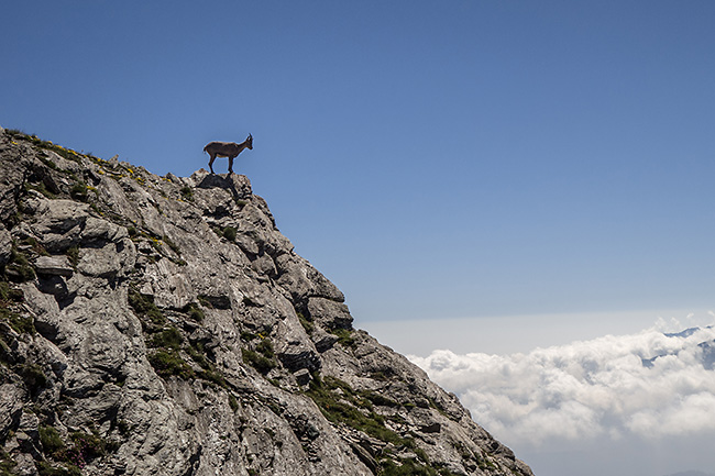 photo montagne alpes randonnee rando queyras col bouchet col malaure