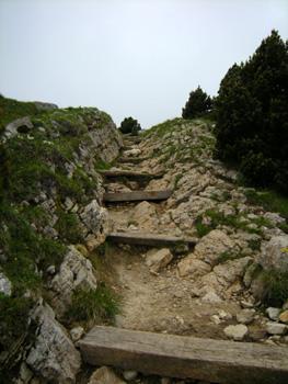 photo montagne alpes randonnée Croix de l'Alpe Chartreuse Col de l'Alpe