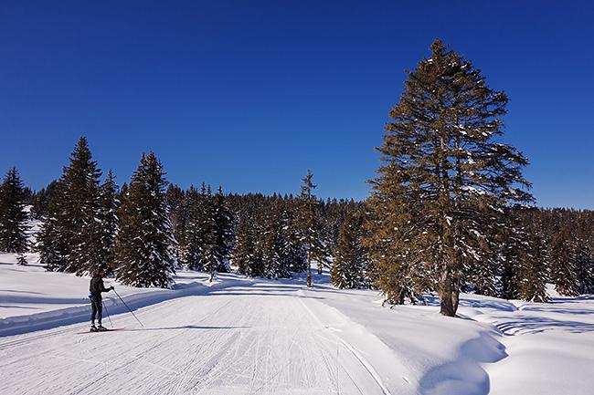 photo montagne alpes randonnée rando ski savoie beaufortain saisies ski fond skating