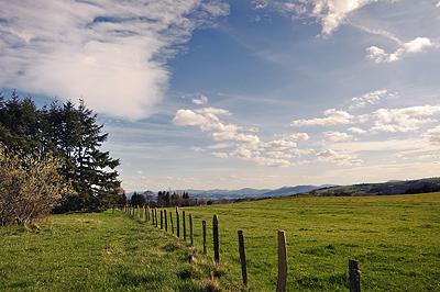 photo forez auvergne loire haute-loire paysage
