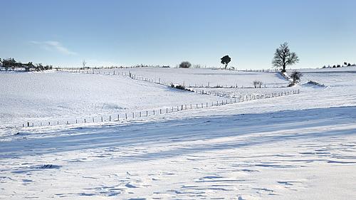 photo forez auvergne loire haute-loire neige hiver paysage