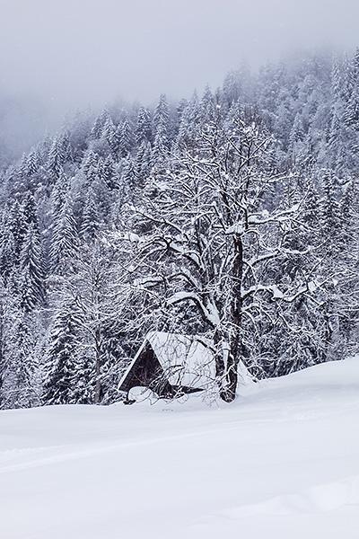photo montagne alpes ski randonnée rando savoie bauges albertville fort batterie marthod