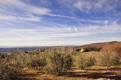 photo italie toscane toscana tuscany chianti