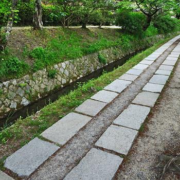 photo japon kyoto Chemin de la Philosophie