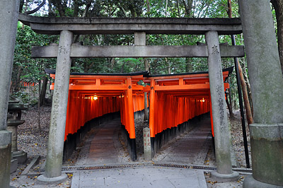photo japon kyoto fushimi inari toriis rouges