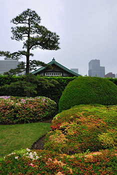 photo japon tokyo jardins palais impérial