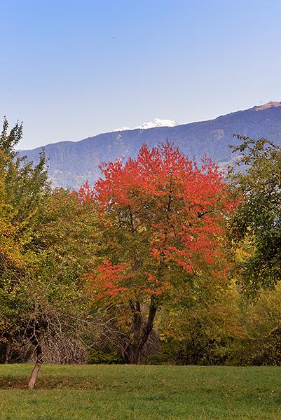 photo montagne alpes randonnée rando savoie bauges marthod fort estal