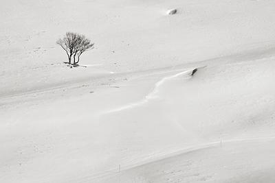 photo montagne randonnée vercors plateau moliere charande