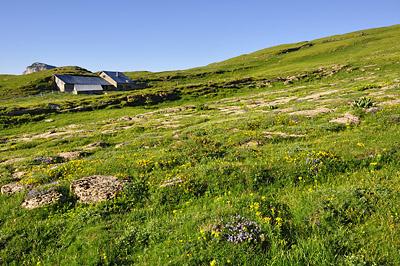 photo montagne alpes randonnée chartreuse chalet de l'alpe