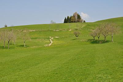 photo montagne alpes randonnée chartreuse mont grele attignat oncin