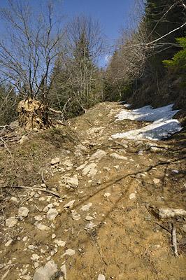 photo montagne alpes randonnée chartreuse mont grele