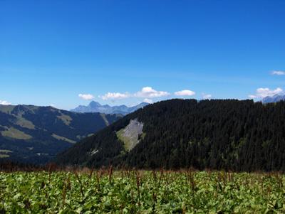photo montagne alpes randonnée Mont Joly retour