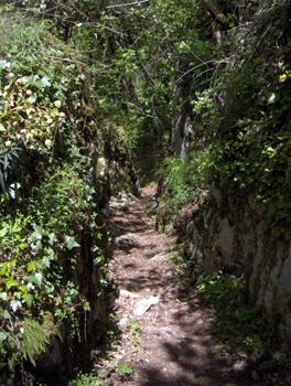 photo montagne alpes randonnée Mont Saint Martin sentier