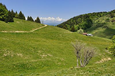 photo montagne alpes bauges randonnée montagne bange creux lachat