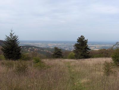 photo montagne randonnée balade Monts d'Or Mont Verdun