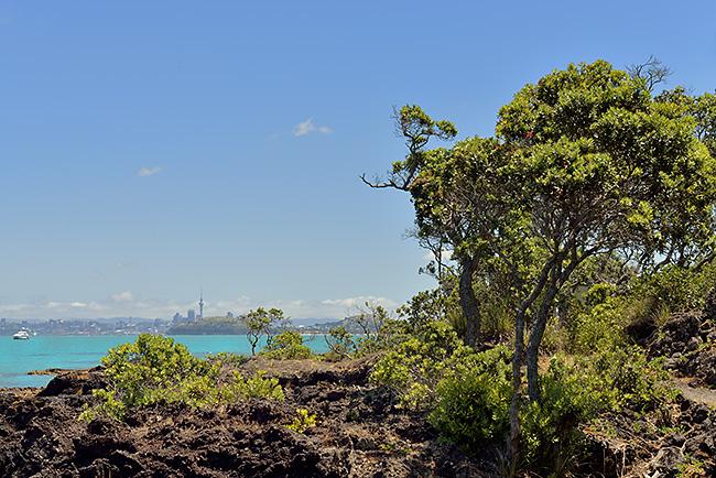 photo voyage nouvelle zelande auckland