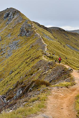photo voyage nouvelle zelande kepler track fiordland milford sound