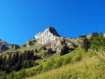 photo montagne alpes randonnée Pointe de Mandallaz forêt paysage