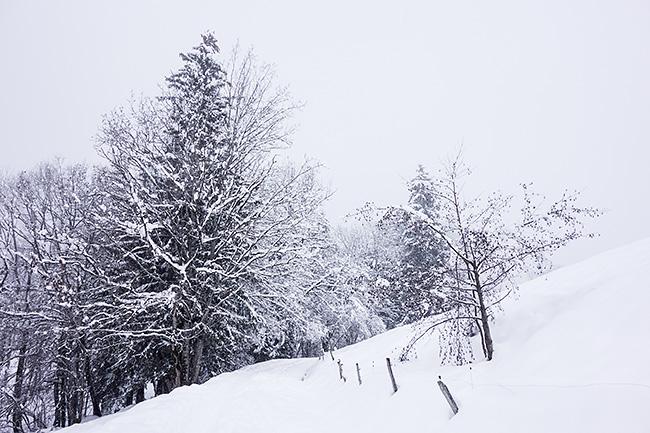 photo montagne alpes randonnée rando raquettes savoie bauges