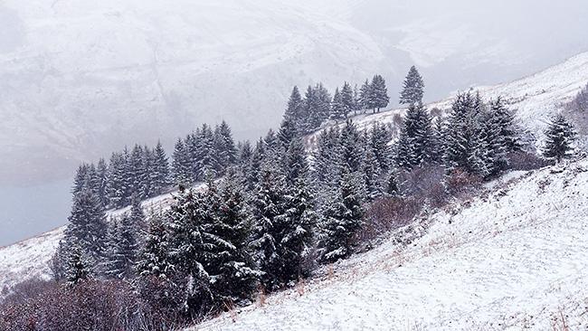 photo montagne alpes randonnée rando savoie beaufortain roselend