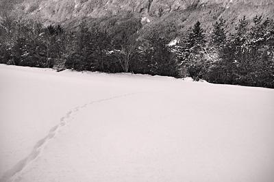 photo montagne alpes saint agnan en vercors neige traces noir et blanc