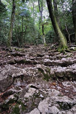 photo montagne randonnée marseille sainte baume
