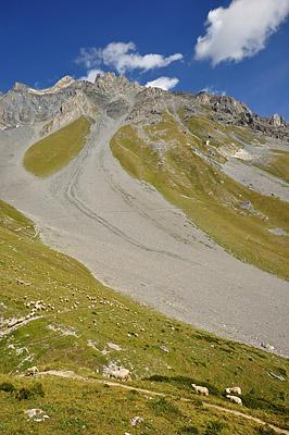 photo montagne alpes randonnée tour des glaciers vanoise TGV sentier moutons