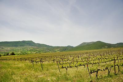 photo montagne alpes randonnée tour baronnies vignes