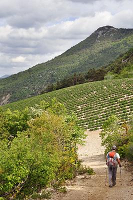 photo montagne alpes randonnée tour baronnies bellecombe tarendol sentier