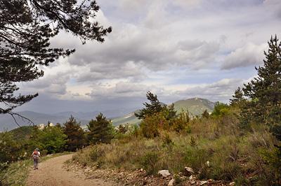 photo montagne alpes randonnée tour baronnies lemp foret