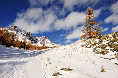 photo montagne alpes cerces thabor randonnée raquettes vallon refuge col chardonnet meleze automne neige